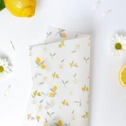 VELLUM - PICNIC - Lemons