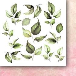 ROSE WINE - Flowers - 6 x 6