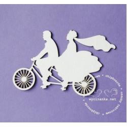 Ženich a nevěsta na kole
