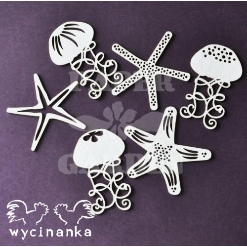 VELKÁ CESTA - Hvězdice a medúzy