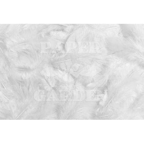 Peříčka - Bílá 10 g
