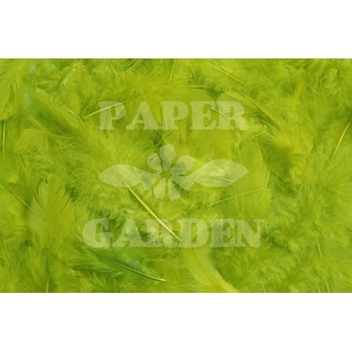 Jarní zelená 10 g