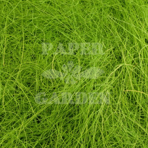 Zelená 100 g