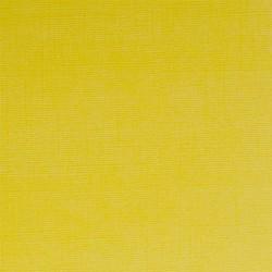 Tmavě žlutá