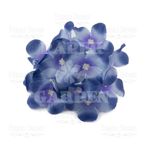 Královská modrá - 12 ks