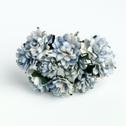 Modrá Antique - 10 ks