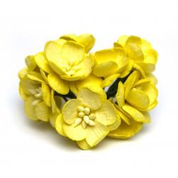 Žlutá - 10 ks