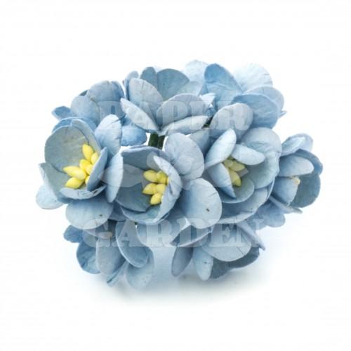 Baby modrá - 10 ks