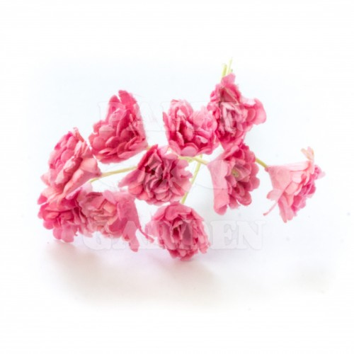 Baby Růžová  - 10 ks