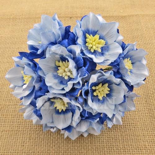 Modrá žíhaná 5 ks