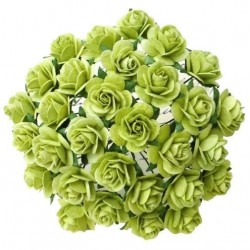 Jarní zelená (15 mm) - 10 ks