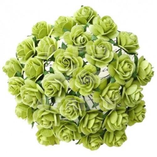 Jarní zelená (20 mm) - 10 ks