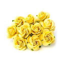 Žlutá (20 mm) - 10 ks