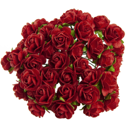Červená (20 mm) - 10 ks