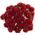 Červená (15 mm) - 10 ks