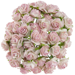 Bílá / Baby Růžová (15 mm) - 10 ks