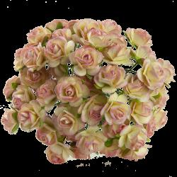 Champagne / Růžová (15 mm) - 10 ks