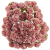 Korálová (15 mm) - 10 ks
