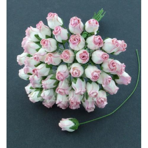 Baby Růžová / Bílá - 25 ks