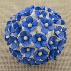 Modrá - 10 ks