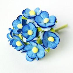 Modré - 10 ks
