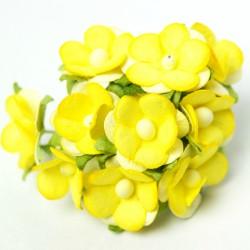 Žluté - 10 ks