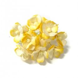 Žluté žíhané - 10 ks