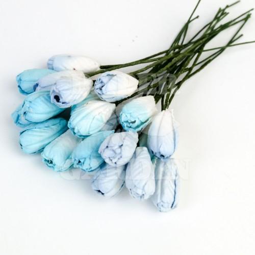 Mix Modrá - 16 ks