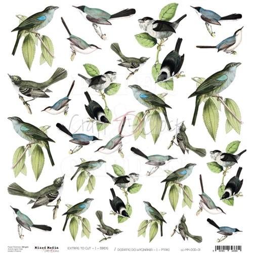 BIRDS - Obrázky k vystřižení