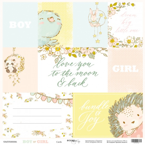 BOY OR GIRL - Cards
