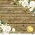 TENDERNESS - Flowers (pozlacený)
