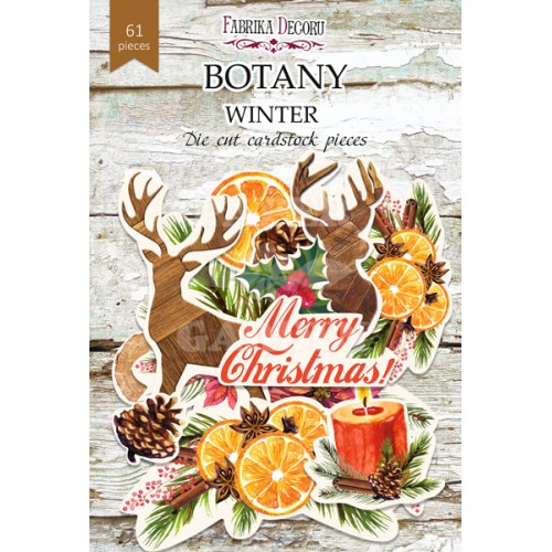 BOTANY WINTER