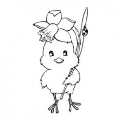 Kuřátko s narcisem